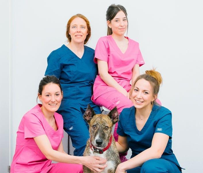 nosotras-equipo-veterinario